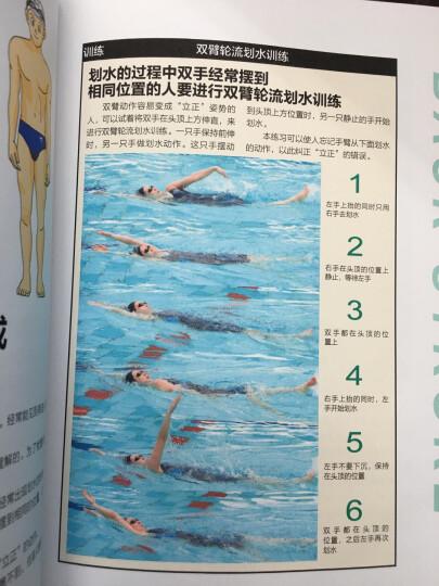 从零开始学游泳:仰泳、蛙泳、蝶泳、自由泳技巧完全图解 晒单图