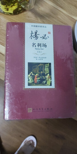 中国翻译家译丛 杨绛译堂吉诃德(套装上下册) 晒单图
