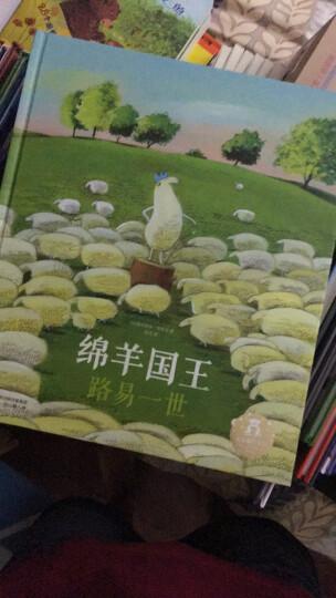 乐乐趣绘本·绵羊国王路易一世 晒单图