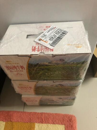 天润 TERUN 浓缩纯牛奶MINI包电商定制礼盒装180g*12盒 晒单图