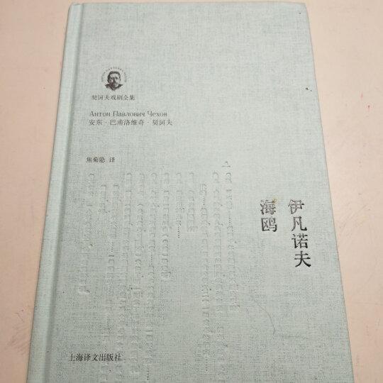 伊凡诺夫海鸥(契诃夫戏剧全集)(精) 晒单图