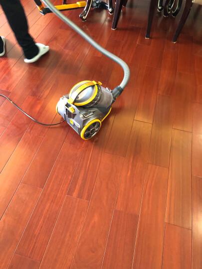 小狗(puppy)小型静音大功率家用卧式吸尘器D-9005 晒单图