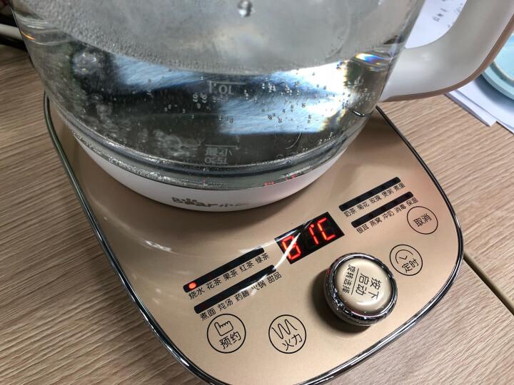 小熊(Bear)养生壶煮茶器煮茶壶热水壶烧水壶电热水壶迷你玻璃花茶壶黑茶热牛奶YSH-A15W6带滤网1.5L 晒单图
