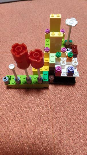 乐高(LEGO)积木 经典创意Classic多轮创意拼砌篮4-99岁 10715 儿童玩具 男孩女孩生日礼物 晒单图