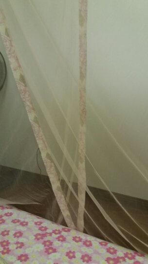 小确幸家纺 蚊帐1.5米/1.8米床 三开门宫廷落地纹帐学生宿舍单双人蚊帐家用床上用品 刺绣-紫色 1.5m*2.0m床22mm标准立柱 晒单图