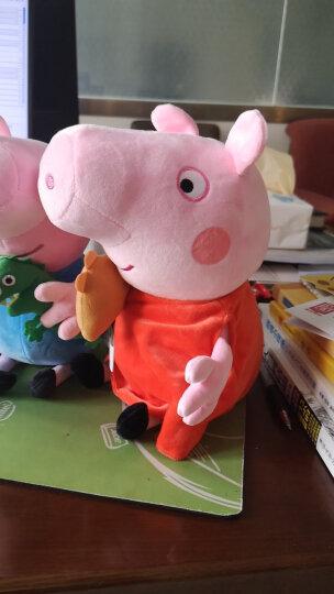 小猪佩奇 毛绒玩具佩琪乔治佩佩恐龙可爱儿童礼物公仔布玩偶系列 一家四口(30cm+19cm)礼盒装 晒单图