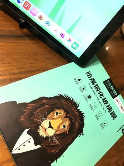 毕亚兹 苹果2018/17新款iPad钢化膜Air2/1/Pro9.7英寸高清玻璃保护膜ipad5/6直边淡化指纹(送贴膜神器)PM-13 晒单图