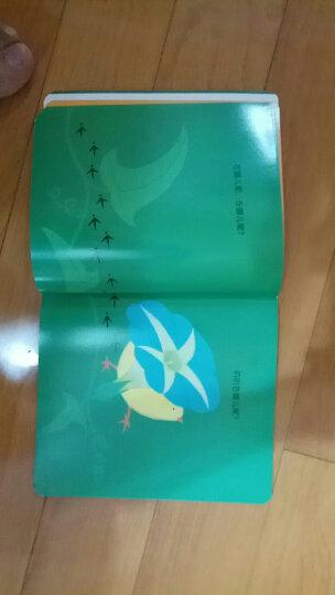 海豚科学馆:101个神奇的实验(套装全2册)(新版) 晒单图