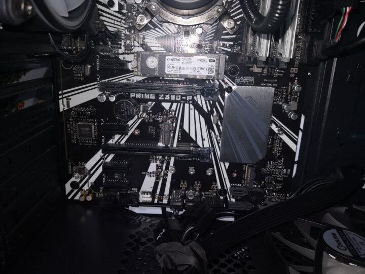 西部数据(Western Digital)西数蓝盘1T 7200转64M 台式机机械硬盘 晒单图