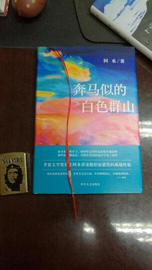 瞻对·终于融化的铁疙瘩:一个两百年的康巴传奇 入选2014中国好书 晒单图