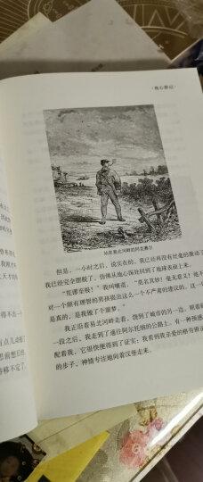 尼尔斯骑鹅旅行记(精装插图典藏本) 晒单图