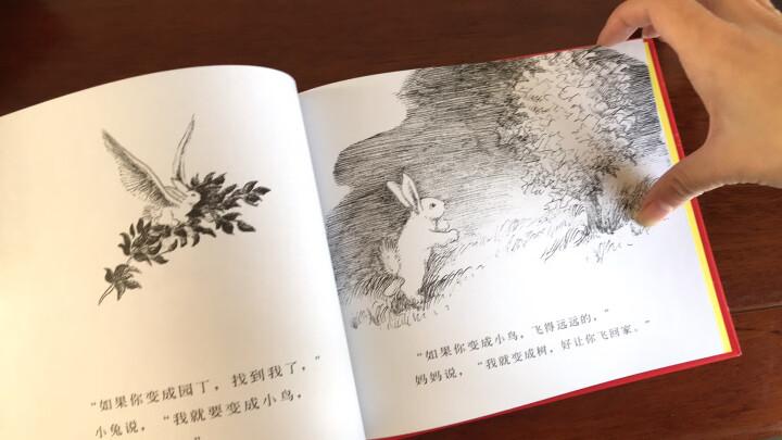 信谊绘本世界精选图画书:逃家小兔 晒单图
