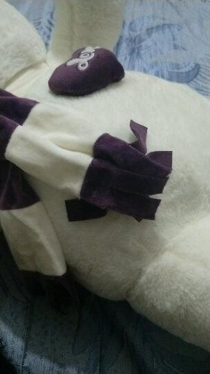 爱尚熊泰迪熊公仔毛绒玩具布娃娃女孩大号熊猫公仔抱抱狗熊可爱睡觉抱女孩娃娃玩偶生日礼物送女友七夕80cm紫 晒单图