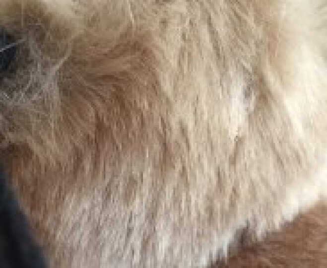 苏子 耳罩耳套保暖女士耳包 冬季男士儿童耳暖耳朵套护耳罩耳捂 卡其色 晒单图