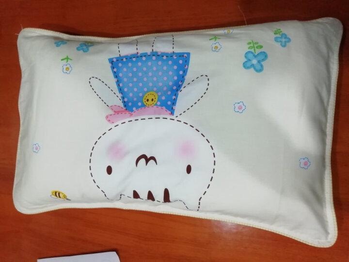 宫品全棉枕套婴幼儿童枕头2-12岁小孩子枕芯 幼儿园宝宝学生枕头30*50cm 小熊天地镶边 一只装(带包装) 晒单图