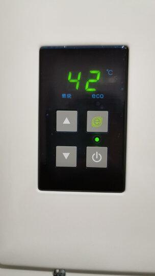 林内(Rinnai) 燃气热水器 10升 智能恒温 CO安防(天然气) RUS-10E32BRNF(T) 晒单图