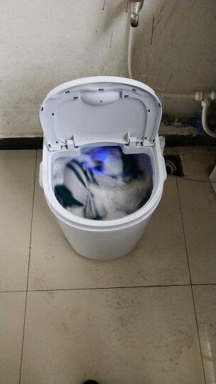 志高(CHIGO) 2.0公斤迷你洗衣机小型婴儿童家用单桶半全自动甩干洗脱一体 【京东秒杀+土豪金】 晒单图