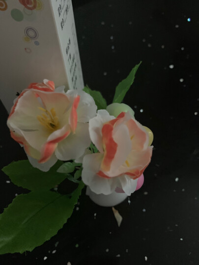 智能光控LED插电发光小夜灯 七彩感应灯节能灯婴儿床头喂奶灯 走廊照明起夜灯氛围灯 升级版海马玫瑰 晒单图