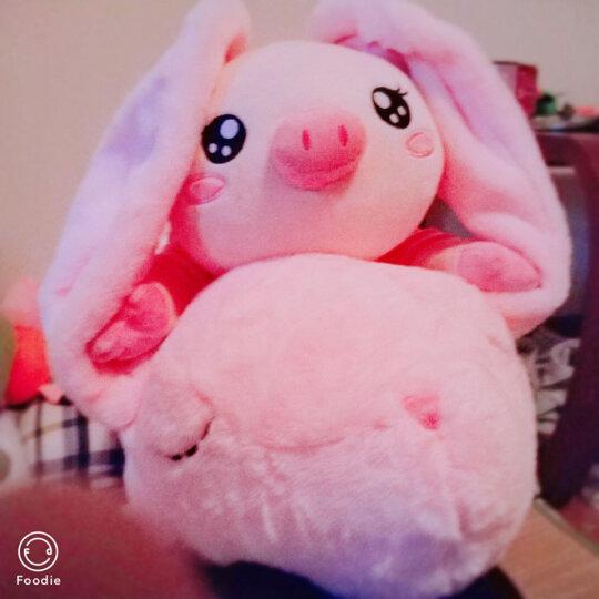 艺乐坊 毛绒玩具兔子长抱枕大号公仔布娃娃玩偶生日礼物送女友长条枕兔女孩生日礼物送女友圣诞节礼物创意熊 灰色兔 1.2米 晒单图