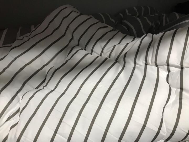 简丽(janlee)被子棉被被芯春秋被四季被 单人床学生宿舍被褥1.5米 152*218cm 灰白条 晒单图
