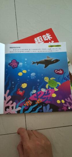 智趣屋:3-6岁综合能力开发趣味贴纸书(套装共12册) 晒单图