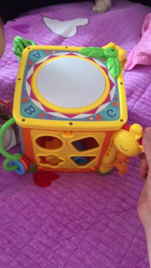 谷雨六面体婴儿玩具0-1岁宝宝周岁礼物儿童益智六面盒智立方形状配对百宝箱早教音乐玩具8-10个月小孩 (1螺丝刀+4节7号电池+迷你兔故事机) 晒单图