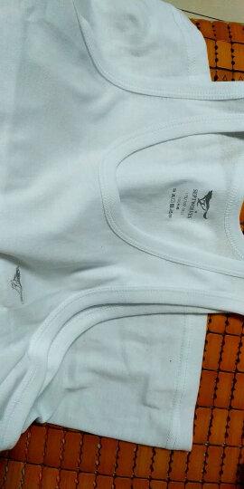 七匹狼背心男纯棉运动健身背心夏季打底修身汗衫 (白+白+灰色)3件装 (180/105)2XL 晒单图