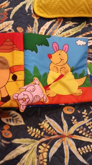 LALABABY/拉拉布书 认知自然 1-3岁宝宝早教 立体布书 独立玩偶 提包设计 海洋里 晒单图