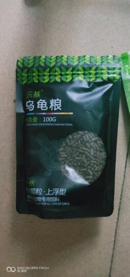 巴西龟饲料水龟粮宠物乌龟幼龟开口粮补钙虾干鱼干鳄龟水龟饲料 缓沉型100g+上浮型170g 晒单图