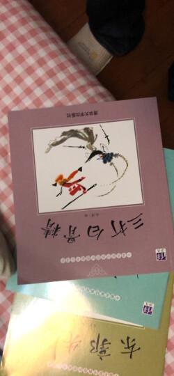 中国名家经典原创图画书乐读本吴带生系列:拍手谣+两只大皮球的故事+鸟邻居+甜甜的桃子(套装共4册) 晒单图
