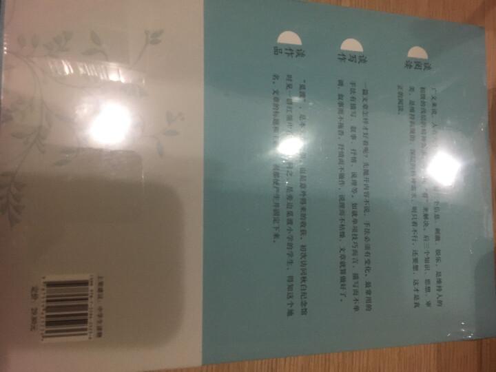 梁衡散文中学生读本系列:把栏杆拍遍+心中的桃花源+人向天的倾诉+带伤的重阳木(套装共4册) 晒单图