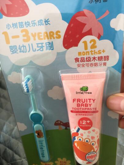 小树苗 儿童牙刷套装A 婴儿宝宝训练牙刷 软毛 2支装 蓝+粉 适合1-3岁 晒单图