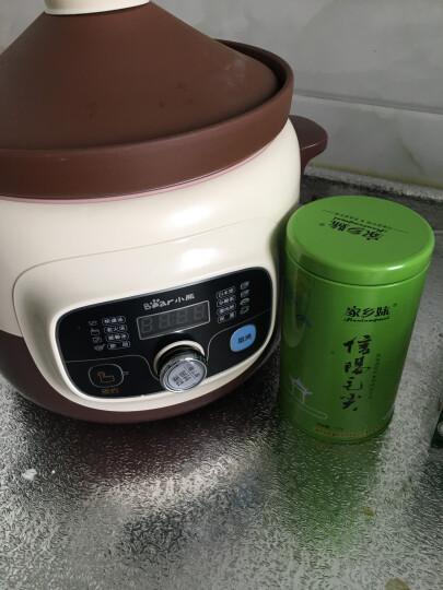 小熊(Bear)电炖锅 电炖盅 煲汤锅 炖汤锅 隔水炖燕窝煮粥锅2.5L白瓷3胆养生陶瓷锅 DDZ-106 晒单图