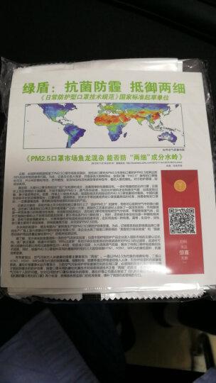 绿盾 抗菌防尘防霾PM2.5可水洗透气棉布 口罩骑行棉布 蓝灰格L 舒适保暖型 晒单图