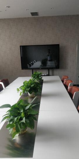 互视达(HUSHIDA)多媒体教学会议一体机触控触摸屏电子白板电视智能会议平板商业显示器 i5/4G/120G固态-无支架 55英寸(双系统) 晒单图