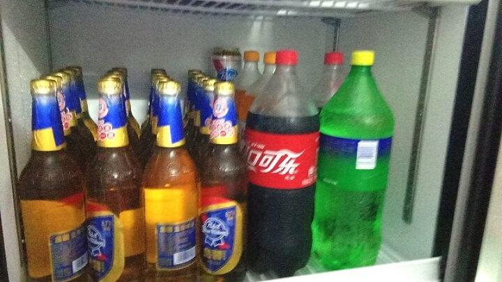 百利(BAILI)348升商用冷柜冷藏立式展示柜 冰柜保鲜水果蔬菜柜饮料陈列柜LC-348 晒单图
