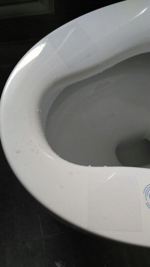 希箭/HOROW 智能马桶一体机座便器即热式无水箱全自动冲洗烘干坐便器 T2-S液晶显示屏 脚感冲水-300坑距 晒单图