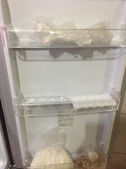 伊莱克斯(Electrolux)253升风冷无霜 双门冰箱 家用电冰箱 大容量 节能静音保鲜 EBE2502TD 晒单图
