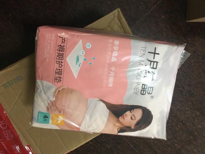 十月结晶 一次性内裤孕产妇产后月子用品女士外出旅行内裤产妇女款 单包 B款5条XXXL(临产140斤以上(纯棉) 晒单图