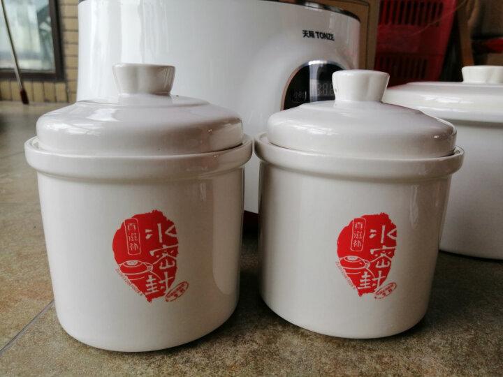 天际(TONZE)电炖锅隔水炖直炖 煮粥煲汤1锅3胆DGD22-22EWG 2.2L 晒单图