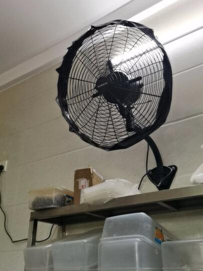 志高(CHIGO)FW-40-16C2RC 遥控壁扇/四叶电风扇/家用壁挂风扇/壁挂式风扇 晒单图