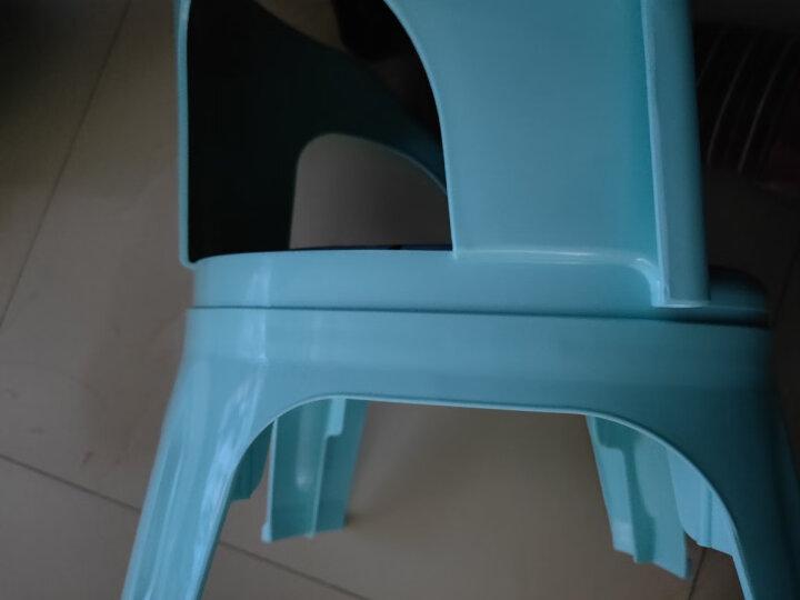 日康 叫叫椅儿童发声椅 幼儿园卡通小板凳 男女宝宝训练练习座椅加厚防滑靠背椅子 蓝色凳子 晒单图