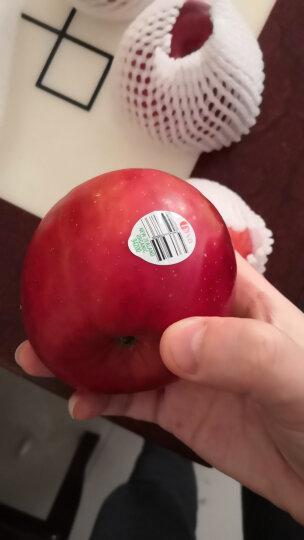 新西兰有机Bostock苹果 精选大果4粒装 单果约160-210g 新鲜水果 晒单图