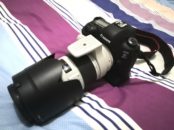 佳能(Canon) EF 70-200mm f/2.8L IS II USM 镜头 70200大三元 晒单图
