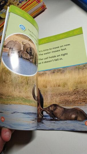 国家地理分级阅读读物 二级:蜥蜴 National Geographic Kids Readers: Lizards National  晒单图