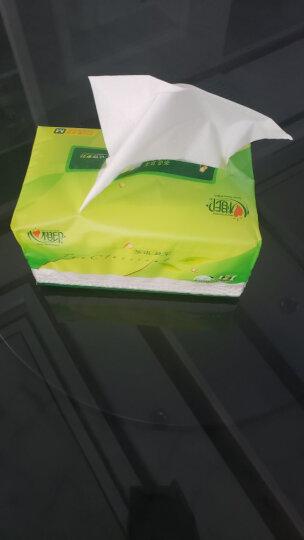 心相印抽纸 茶语丝享系列3层150抽面巾纸*24包纸巾(M plus码 母婴可用 整箱销售)(新老包装随机发货) 晒单图