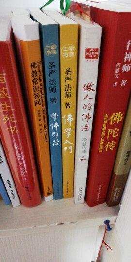 学佛三书/ 学佛群疑+正信的佛教+佛学入门  圣严法师 晒单图