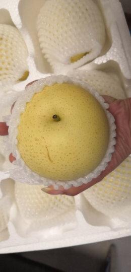 百宝源 河北皇冠梨 5斤装 一级果 新鲜水果 晒单图