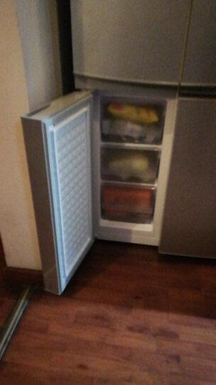 康佳(KONKA)330升 十字对开门冰箱 实用四门 家用电冰箱 冷藏室隔离(银色)BCD-330L4GY 晒单图