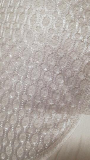 睡眠博士(AiSleep)枕芯 枕头决明子荞麦枕纤维枕 舒睡酒店枕头 晒单图